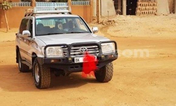 Acheter Occasion Voiture Toyota Land Cruiser Gris à Niamey, Niamey