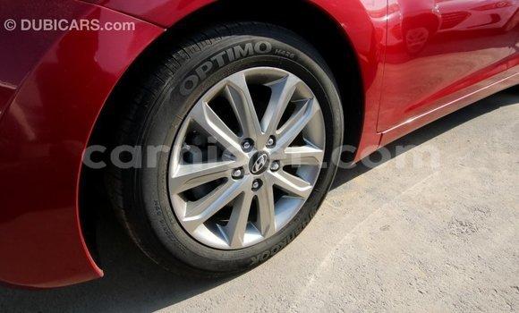 Acheter Importé Voiture Hyundai Elantra Rouge à Import - Dubai, Agadez