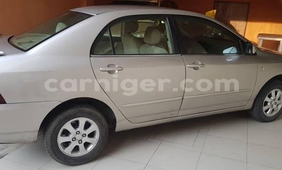 Premier Site De Petites Annonces Automobiles Niger